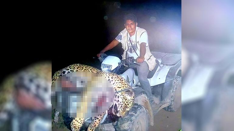 Director del INRA de Beni habla sobre las imágenes con un jaguar muerto