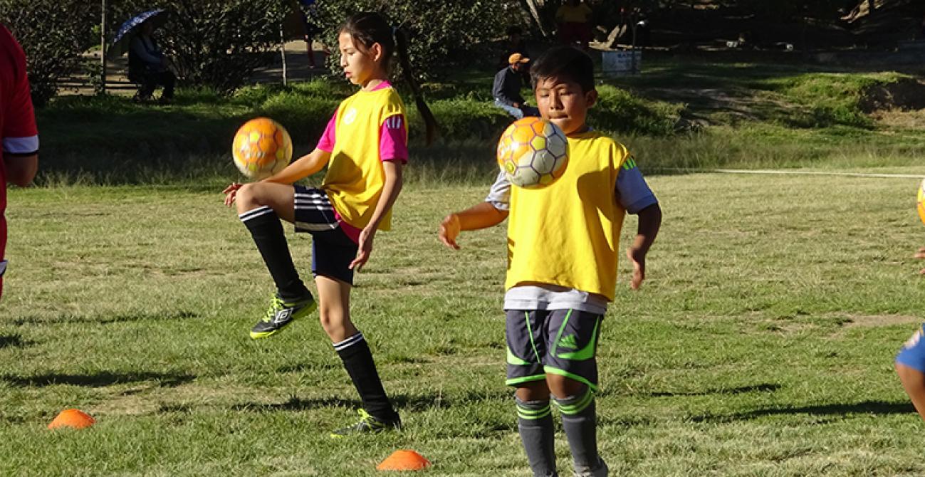 Clubes infanto-juveniles  talento y futuras promesas del fútbol ... 226f3a58c73d3