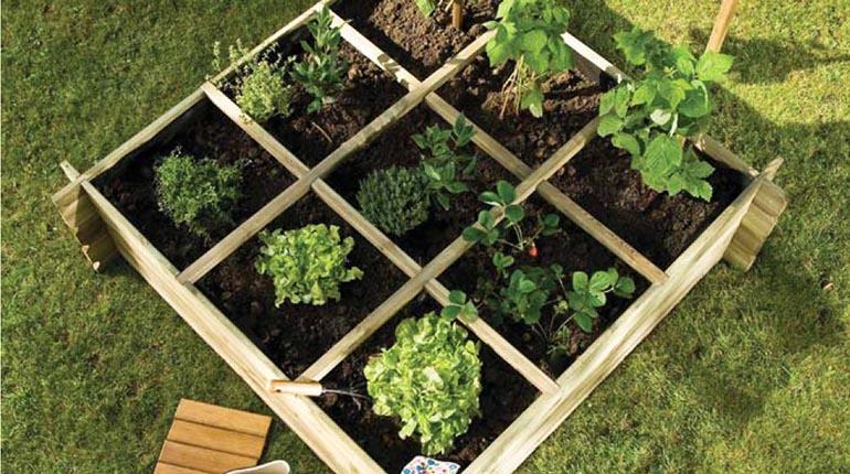 Tu huerta en casa los tiempos - Jardines con plantas aromaticas ...