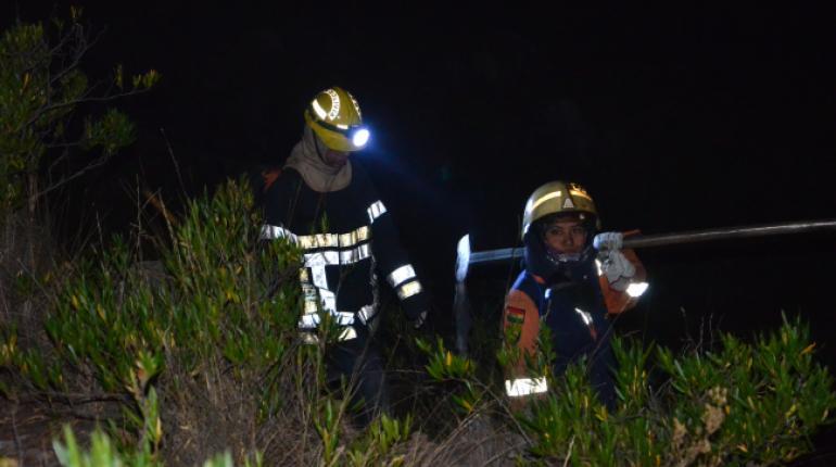 Controlado incendio en Parque Tunari de Bolivia — VENEZUELA
