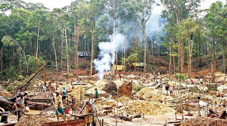 Bolivia y su deforestación alarmante | Los Tiempos