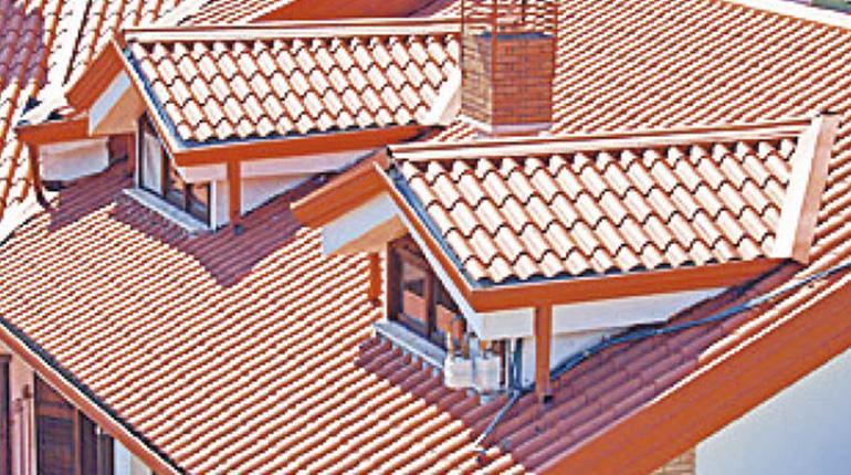 techo tipo teja el ideal en todo calaminas los tiempos