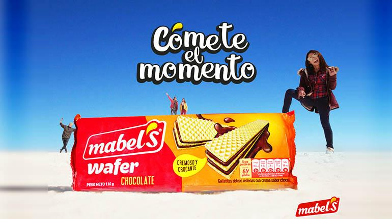 Image result for mabel's wafers