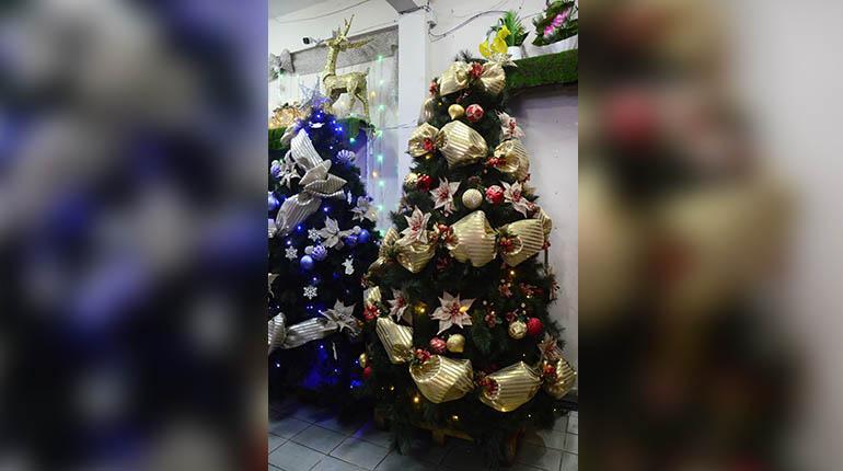 a3a05575eec71 El árbol es el símbolo más representativo de la Navidad.