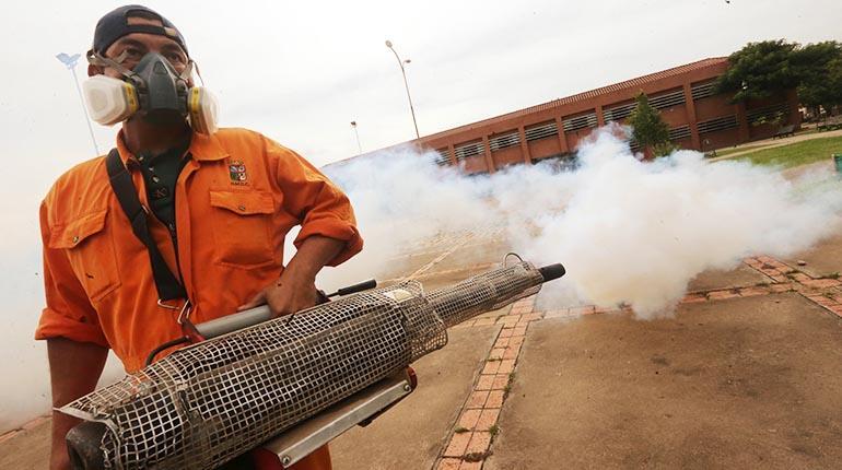 Resultado de imagen para alcaldia fumiga barrios santa cruz