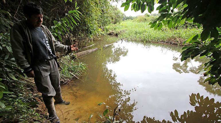 Image result for contaminacion bulo bulo