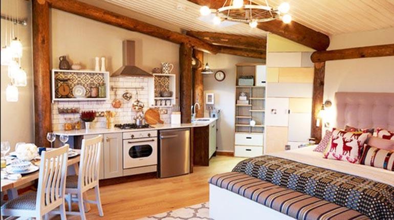 Monoambientes una opci n para iniciar un hogar propio for Departamentos decorados con plantas