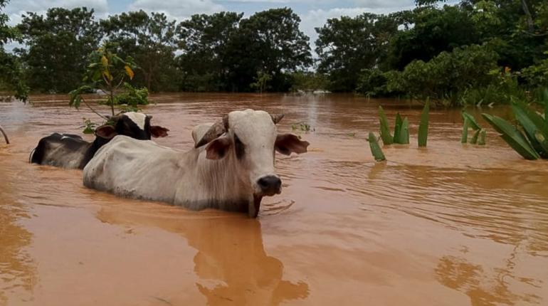 17 municipios son declarados en desastre por fenómenos climáticos