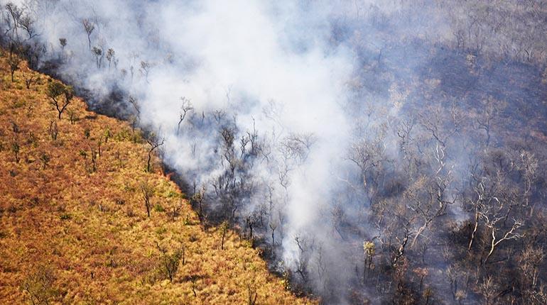 Resultado de imagen para incendios chiquitania